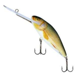 Salmo Perch F SDR Real Roach 14cm