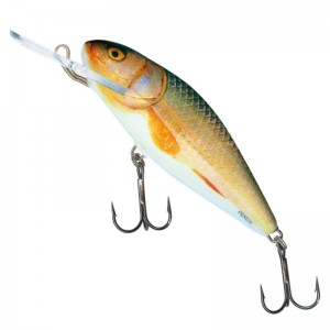 Salmo Perch F DR Real Roach 8cm