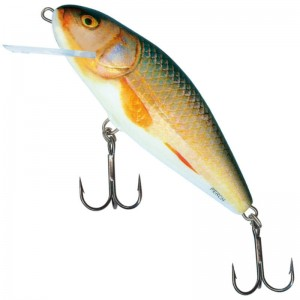 Salmo Perch F Real Roach